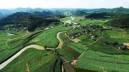 外媒:中国正在成为有机食品生产的世界领先者